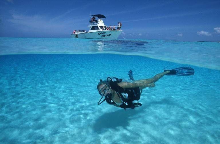 turks ve caicos adalarında dalış